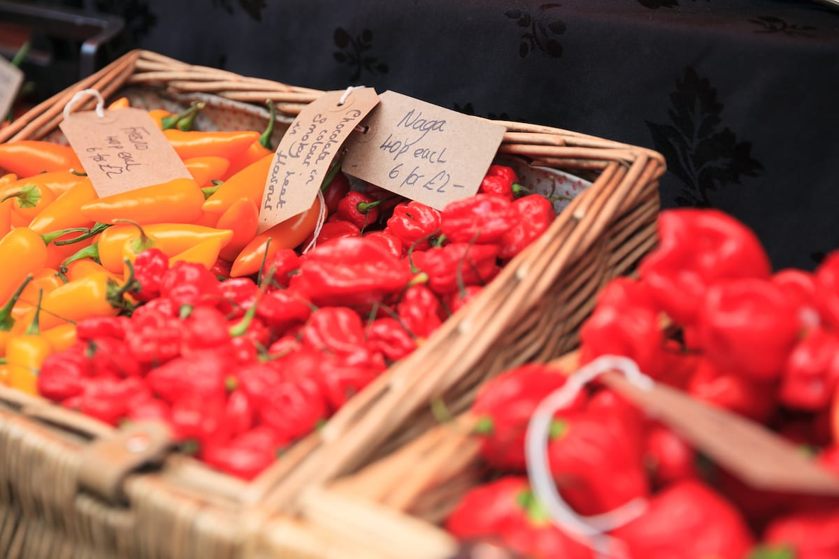 What's on at Waddesdon, August 2019 - Chilli Fest