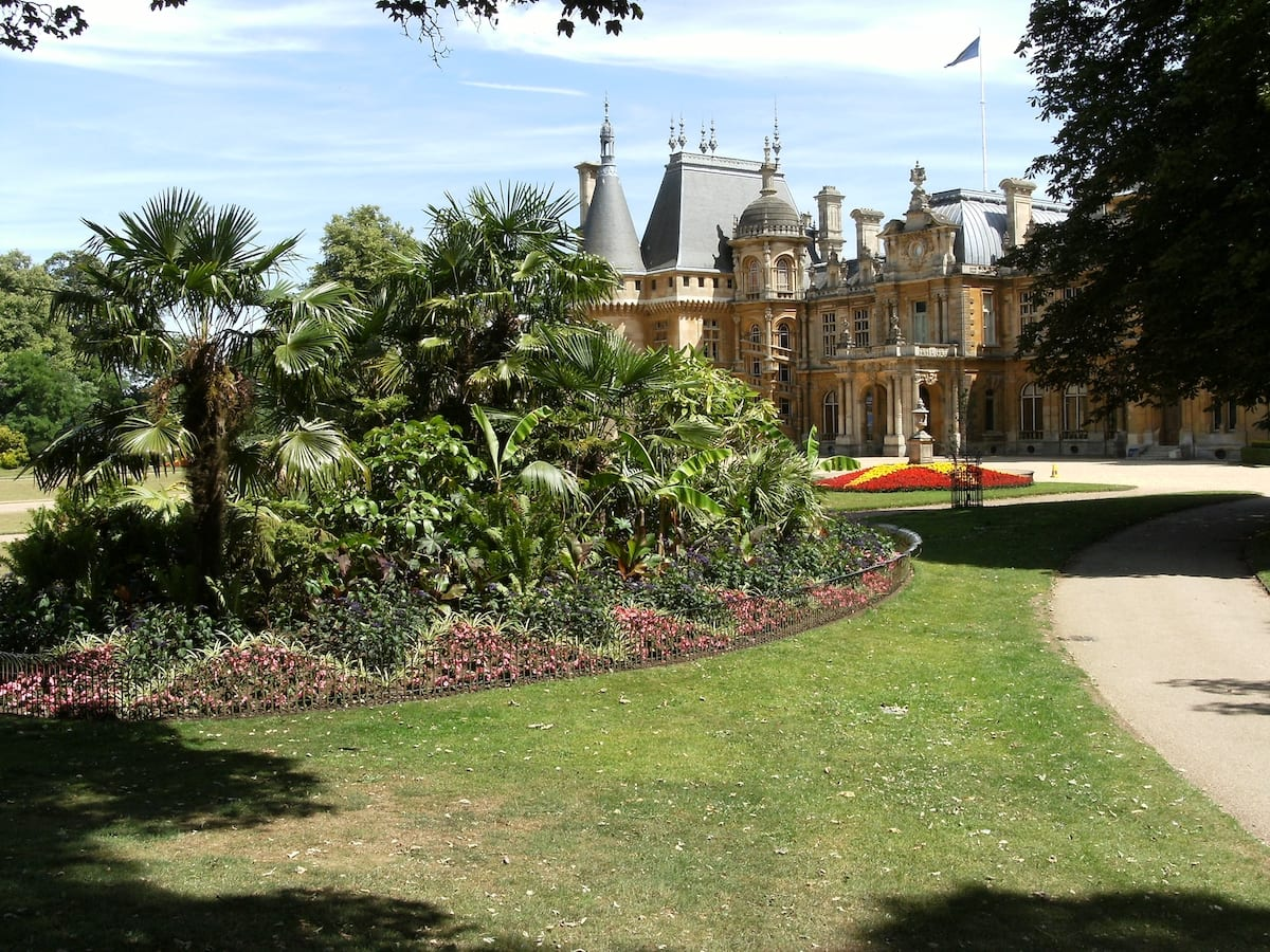 What's on at Waddesdon, August 2019 - The Tropical Mound at Waddesdon